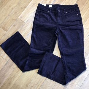 NWT Lands End Canvas Boot Cut Cords puce 29